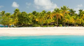 Palm Island: A Complete Overview Of Palm Island –  You Need To Know